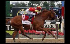Justify Belmont Stakes PHOTO Horse Race Triple Crown Winner 2018 Kentucky Derby
