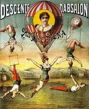 "18x24""Decoration poster.Interior design Art.Miss Stena.Circus act show.6396"