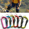 '6PCS Outdoor Camping Carabiner Clip Aluminum Alloy D Screw Lock Hook Key Chain' from the web at 'https://i.ebayimg.com/thumbs/images/g/rXEAAOSwVJhZXIxh/s-l96.jpg'