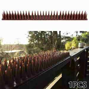 Anti Climb Spikes Fence Wall Security Spikes Bird Repellent Prickle Strips N N