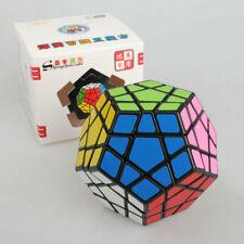 Magic Cube Puzzle Brain Trainer Educational Toy Dodecahedron shengshou