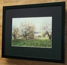 Cherry Blossoms, Ned Young print - 20''x16'' frame, sheep wall art