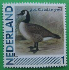Nederland 2791-Aa-19 Grote Canadese Gans Bird Vogel Vögel 2011 Postfris
