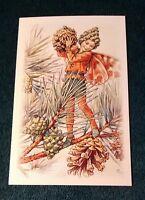 CICELY MARY BARKER FLOWER FAIRIES POSTCARD, THE PINE TREE FAIRY, WINTER TREES