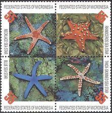 Micronesia 1996 Star Fish/Marine Animals/Nature/Wildlife 4v s-t blk (s755)