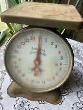 Vintage American Family Kitchen Scale 25 pounds Green Rustic Farmhouse