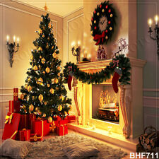 Christmas 10'x10' Computer/digital Vinyl Scenic Photo Background Backdrop BHF711