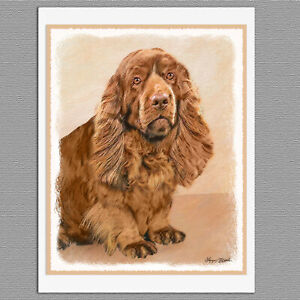 6 Sussex Spaniel Dog Blank Art Note Greeting Cards