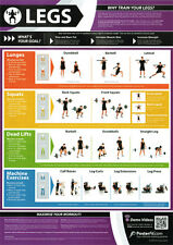 LEGS WORKOUT Professional Fitness Training Gym PosterFit Poster w/QR Code