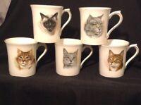 ROSINA FINE BONE CHINA ~ MADE IN ENGLAND ~SET OF FIVE CAT KITTEN CUP MUG VINTAGE