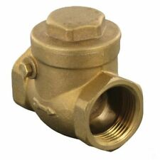 Horizontal check valve 2""