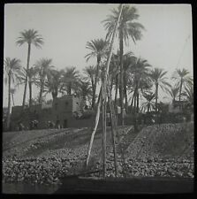 Glass Magic Lantern Slide VILLAGE ON THE NILE DATED 1913 OLD PHOTO SUDAN / EGYPT