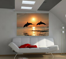 Dolphins large giant animals poster print photo mural wall art ia511