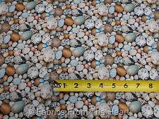Birdwatching Wild Bird Nest Eggs Nature Packed BY YARDS Elizabeths Studio Fabric