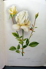 Belles ROSES HORTICULTURE BOTANIQUE ART FLORAL JARDINS 16 CHROMOLITHOGRAPHIES HT