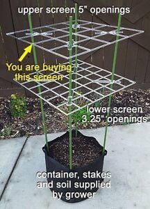 """ScrOG Screen - P SCROG Screen (5"""" openings) low cost"""