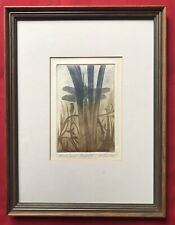 Original Irish Art Artists Proof Print Etching Dragonfly By St. Claire Allen