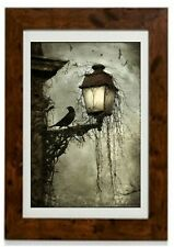 Bird on a Lantern Framed Print by Arthur Rackham