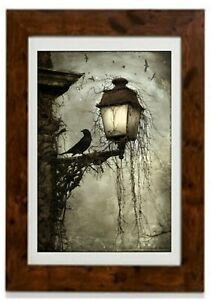 Bird on a Lantern Framed Print by Arthur Rackham
