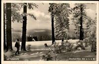 Oberhof Thüringen Postkarte 1936 gelaufen Waldpartie Langläufer Winter Schnee