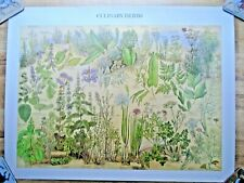 More details for vintage 1976 culinary herbs british museum natural history wall chart