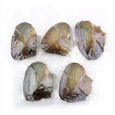 Pearl 7-8mm Freshwater Pearl Vacuum PackagingH 3Pc Akoya Pearl Oysters With Real