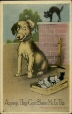 Stray Litter Kittens in Keens Mustard Box - Dog Can't Be Blamed c1910 Postcard
