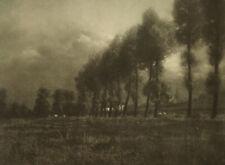Leonard Misonne 1870-1943 Les Grands Peupliers 1914