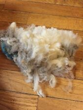 Purebread Targee Natural Creamy White Spinning fiber fleece RAW WOOL 1oz RWO-38