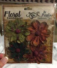 Petaloo Flowers Darjeeling Collection - WildFlower mix