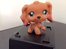 Littlest Pet Shop #716 Cocker Spaniel Tan Dipped Brown Snowflake Eyes Very Cute