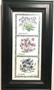 Herbs Botanical Signed Print by Fiona Butler Periwinkle Cyclamen Forget Me Not