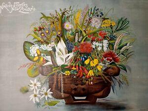 Original chromo lithograph 1899 William Huddlestone NewZealand Flora 61.5x 85cm