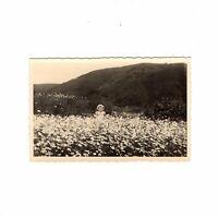 AK Ansichtskarte Niedliches kleines Mädchen in einem Blumenfeld