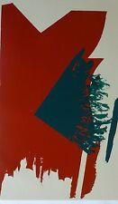 """Michael Steiner """"LAREX"""" 1979 HAND SIGNED SERIGRAPH 42x30 US ARTIST"""