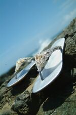 Ladies Silver Leather and Ivory Shell Hand  Made Flip Flop UK Sizes 3 - 8