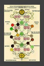 Framed Print - Rosicrucian Philosophy Flow Chart (Picture Masonic Christian Art)