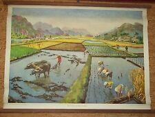 Laminage de table affiche-école d'enseignement toileCulture du riz en Indochine