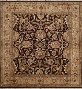 Traditional Floral Agra Oriental Area Rug Hand-knotted Classic Carpet 5x5 Square