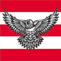"VEGASBEE® LARGE EAGLE USA SYMBOL BLACK-WHITE EMBROIDERED IRON-ON PATCH 12"""