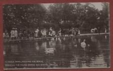 London. Cussold Park. Feeding the Birds, Geese Swans  vintage postcard  zc.159