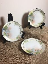 Prussia B Royal Rudolstadt Hand Painted Side Plate Signed Set of 3 -floral white