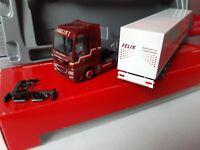 MAN TGX XXL Felix Transport AG ZWINGEN / Arlesheim Schweiz  Kühlkoffer 155694