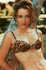 Gillian Anderson A4 Photo 211