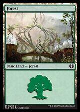 Forest 264 NM X4 Kaladesh Basic Land Common MTG
