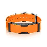 Dogtra Additional Receiver Dog Training E-Collar Orange 3/4 Mile ARC-RX Hunting