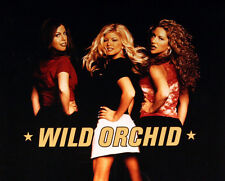WILD ORCHID 1997 SELF TITLED PROMO POSTER ORIGINAL