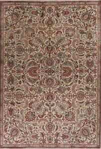 Floral Semi Antique Ivory Hand-Knotted Area Rug Traditional Oriental Carpet 7x11