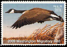 WASHINGTON #24 2009 STATE DUCK STAMP CANADA GOOSE By Robert Steiner
