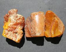 Natural Genuine Butterscotch Egg Yolk Baltic Amber Stones 128.8g.